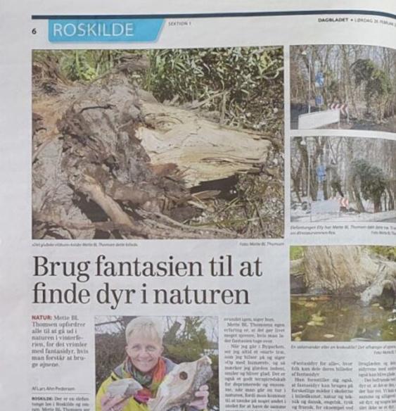 Photos Gone Wild i Dagbladet Roskilde